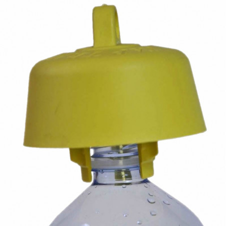 Hornet and wasp bottle trap. Packet of 5 pieces